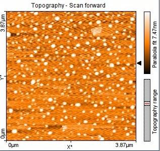 Micrografía de Nanopartículas de almidón de papa huamantanga