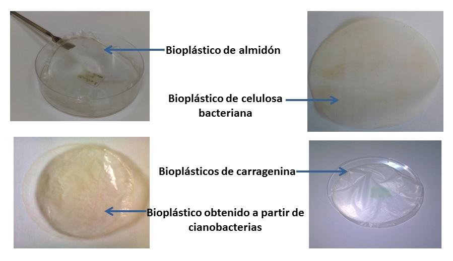 bioplasticos